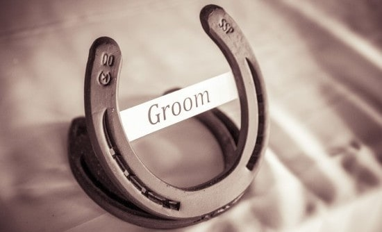 groomshoe
