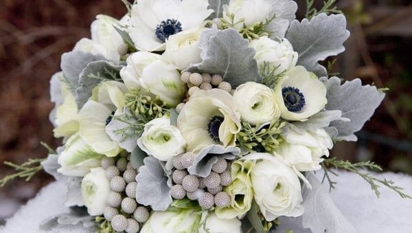 greybouquet