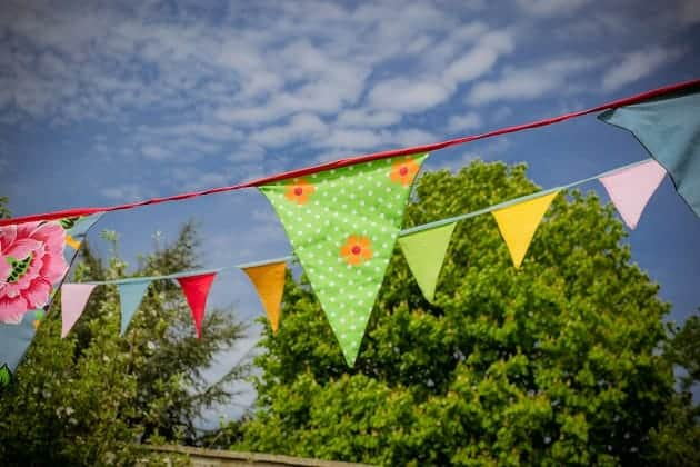 Bunting in front of a sky and trees
