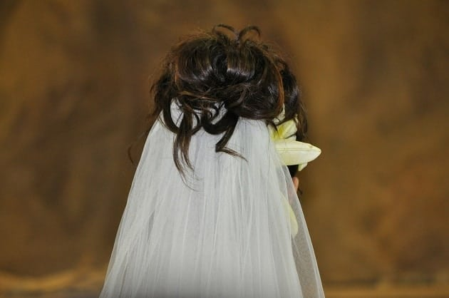 A wedding veil from behind